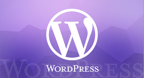 详解WordPress中的PHP